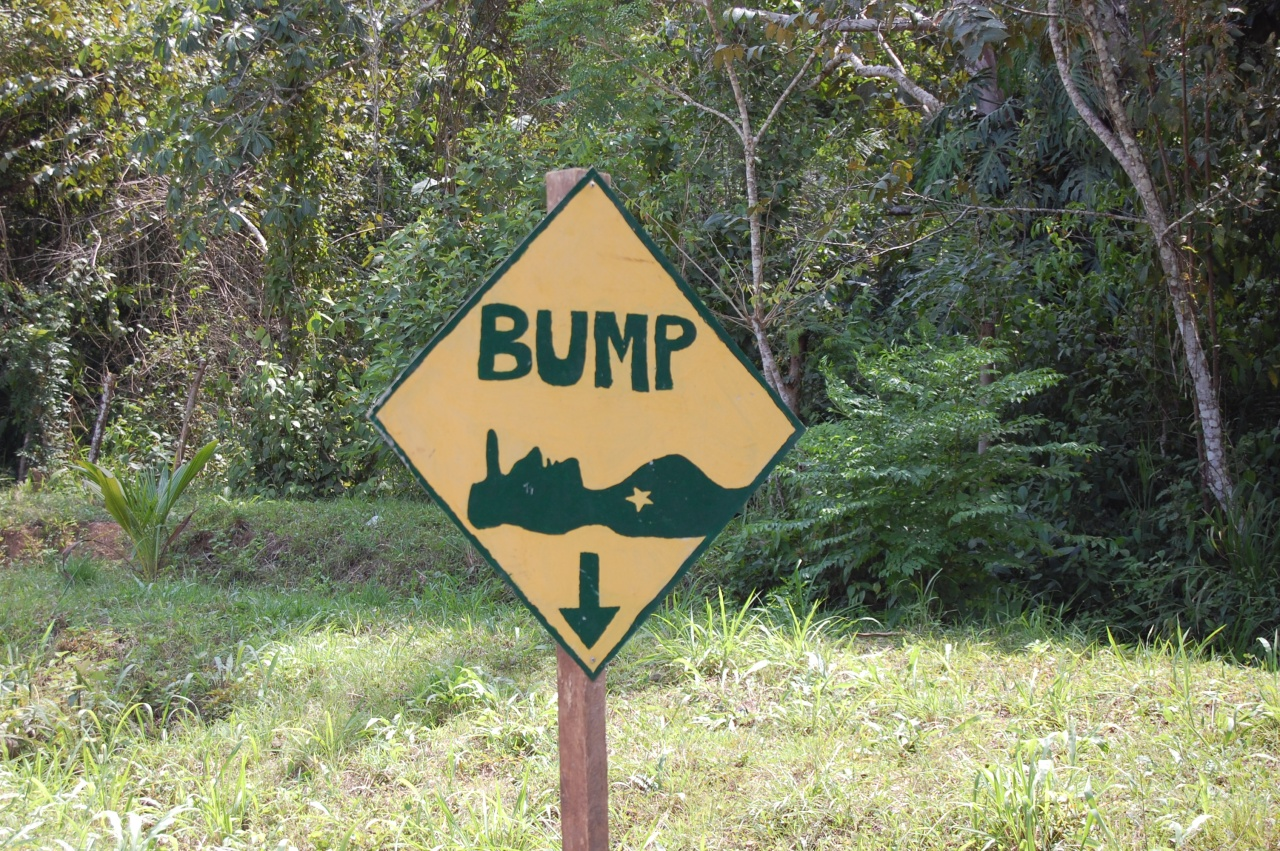 The Belizeanname for speed bumps?  Sleeping policemen.