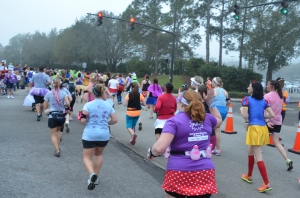 Mile 7 just after the Grand Floridian at RunDisney